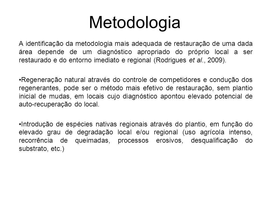 Metodologia A identificação da metodologia mais adequada de restauração de uma dada área depende de um diagnóstico apropriado do próprio local a ser r