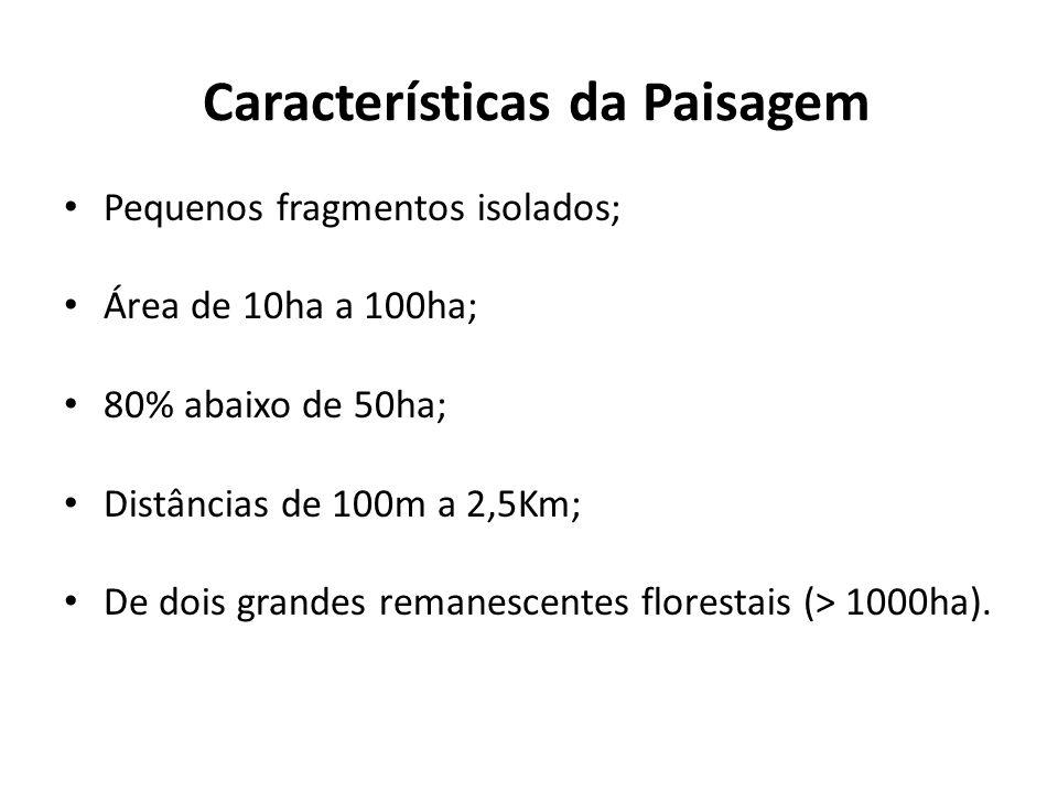 Características da Paisagem Pequenos fragmentos isolados; Área de 10ha a 100ha; 80% abaixo de 50ha; Distâncias de 100m a 2,5Km; De dois grandes remane