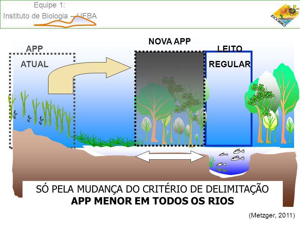 Equipe 1: Instituto de Biologia – UFBA LEITO REGULAR NOVA APP SÓ PELA MUDANÇA DO CRITÉRIO DE DELIMITAÇÃO APP MENOR EM TODOS OS RIOS APP ATUAL (Metzger