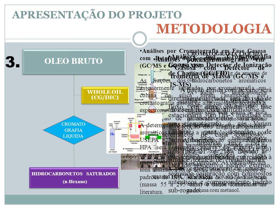 OLEO BRUTO HIDROCARBONETOS SATURADOS (n-Hexano) WHOLE OIL (CG/DIC) APRESENTAÇÃO DO PROJETO METODOLOGIA Análises por Cromatografia em Fase Gasosa com D