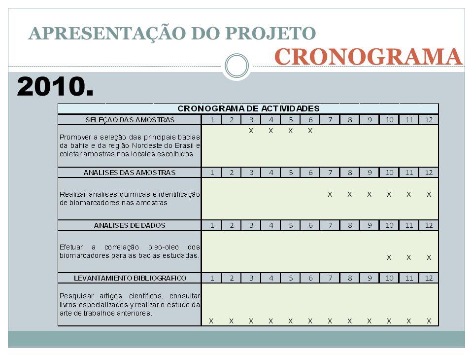 CRONOGRAMA APRESENTAÇÃO DO PROJETO 2010.