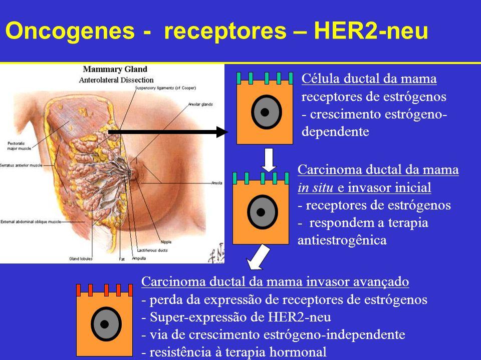 Célula ductal da mama receptores de estrógenos - crescimento estrógeno- dependente Carcinoma ductal da mama in situ e invasor inicial - receptores de