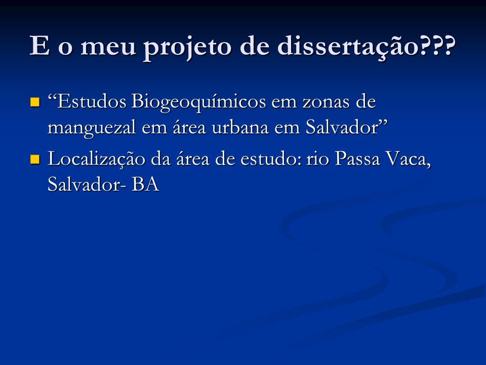 E o meu projeto de dissertação??? Estudos Biogeoquímicos em zonas de manguezal em área urbana em Salvador Estudos Biogeoquímicos em zonas de manguezal