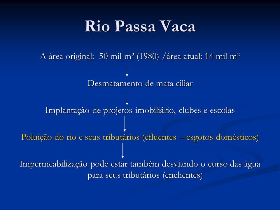 Rio Passa Vaca A área original: 50 mil m² (1980) /área atual: 14 mil m² Desmatamento de mata ciliar Implantação de projetos imobiliário, clubes e esco