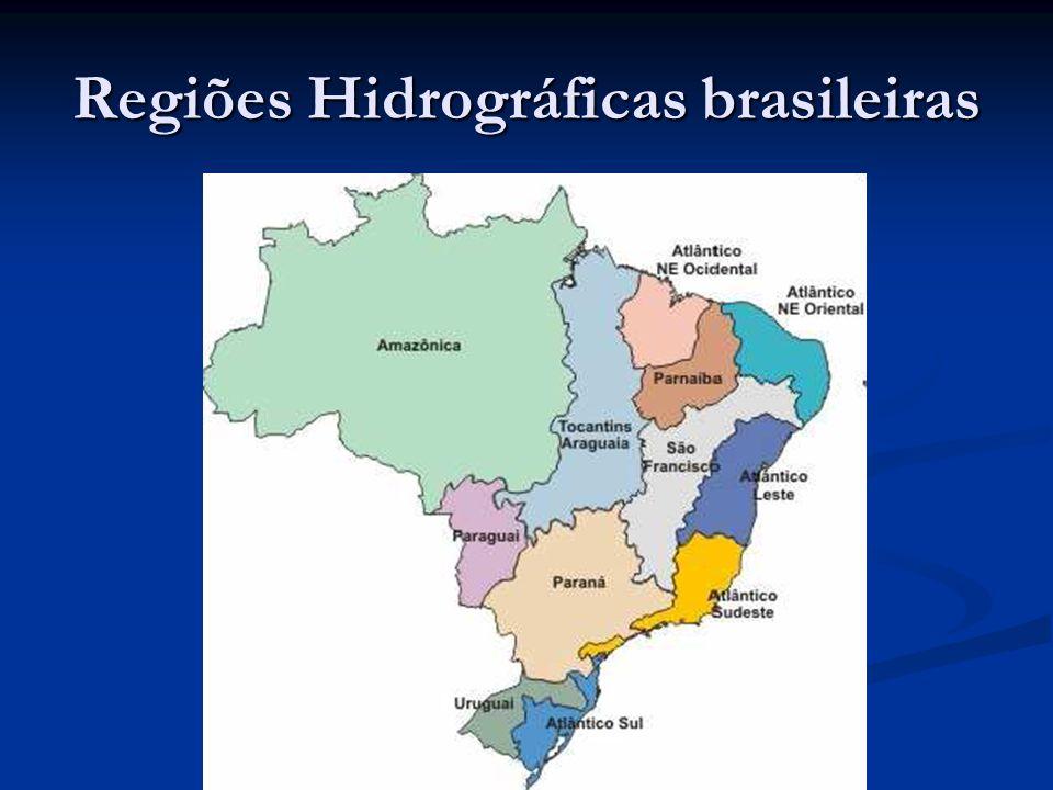 Bacia Hidrográfica: Definições Microbacias e sub-bacias - Divergência entre autores Microbacias e sub-bacias - Divergência entre autores Cada bacia hidrográfica interliga-se com outra de ordem hierárquica superior, constituindo, em relação à última, uma sub-bacia.