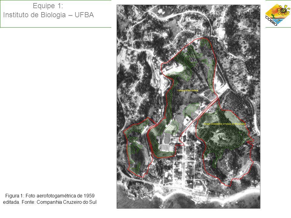 Equipe 1: Instituto de Biologia – UFBA Figura 1: Foto aerofotogamétrica de 1959 editada. Fonte: Companhia Cruzeiro do Sul