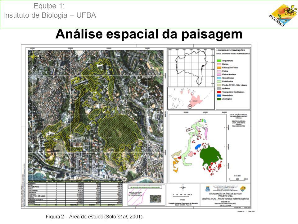 Equipe 1: Instituto de Biologia – UFBA Análise espacial da paisagem Figura 3 – Área de estudo (Soto et al, 2001).