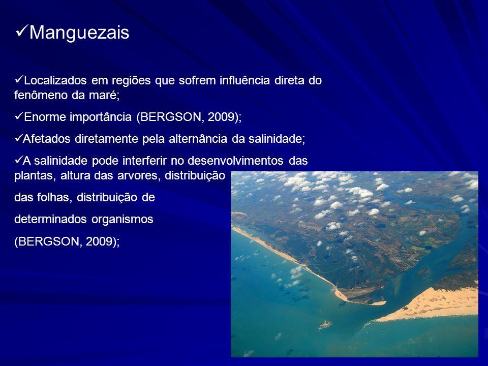 Varia ao longo das áreas de mangue (MANGUEZAIS, 2009); - alta salinidade próxima da área de encontro com o mar; - diminuindo quanto mais longe da área de encontro; Promove circulação de nutrientes (TÂNIA & LAZARO, 2009); Rio São Paulo – Baía de Todos os Santos.