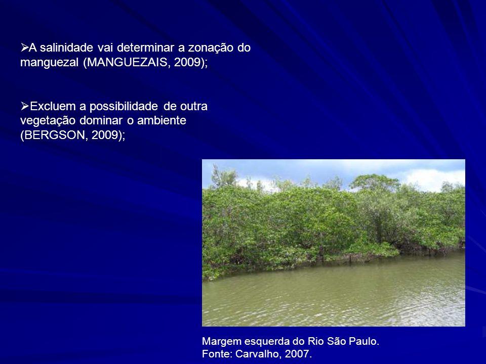 Influência da maré na herbivoria de Laguncularia racemosa (GOLSALVEZ, 2008); - herbívoros de maior concentração nos manguezais são os caranguejos e os insetos; - os insetos consomem os tecidos vivos; A ação da maré acaba por inibir a herbivoria de insetos (GOLSALVEZ, 2008); o que acaba por favorecer certas espécies de plantas em áreas com maior nível de alagamento (GOLSALVEZ, 2008);