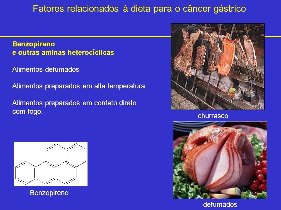 Fatores relacionados à dieta para o câncer gástrico Benzopireno e outras aminas heterocíclicas Alimentos defumados Alimentos preparados em alta temper