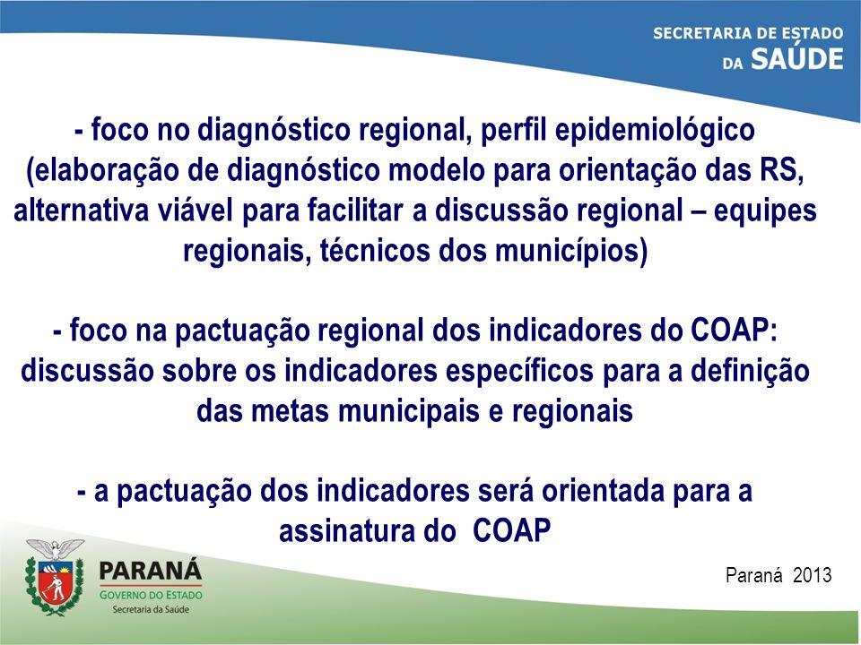- foco no diagnóstico regional, perfil epidemiológico (elaboração de diagnóstico modelo para orientação das RS, alternativa viável para facilitar a di