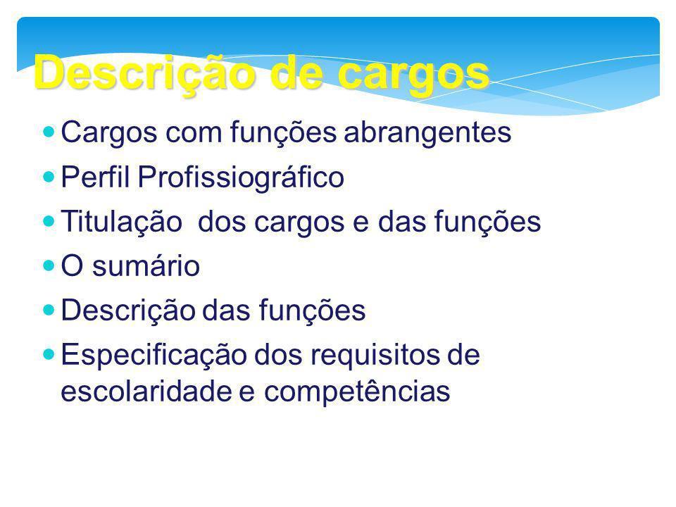 Descrição de cargos Cargos com funções abrangentes Perfil Profissiográfico Titulação dos cargos e das funções O sumário Descrição das funções Especifi