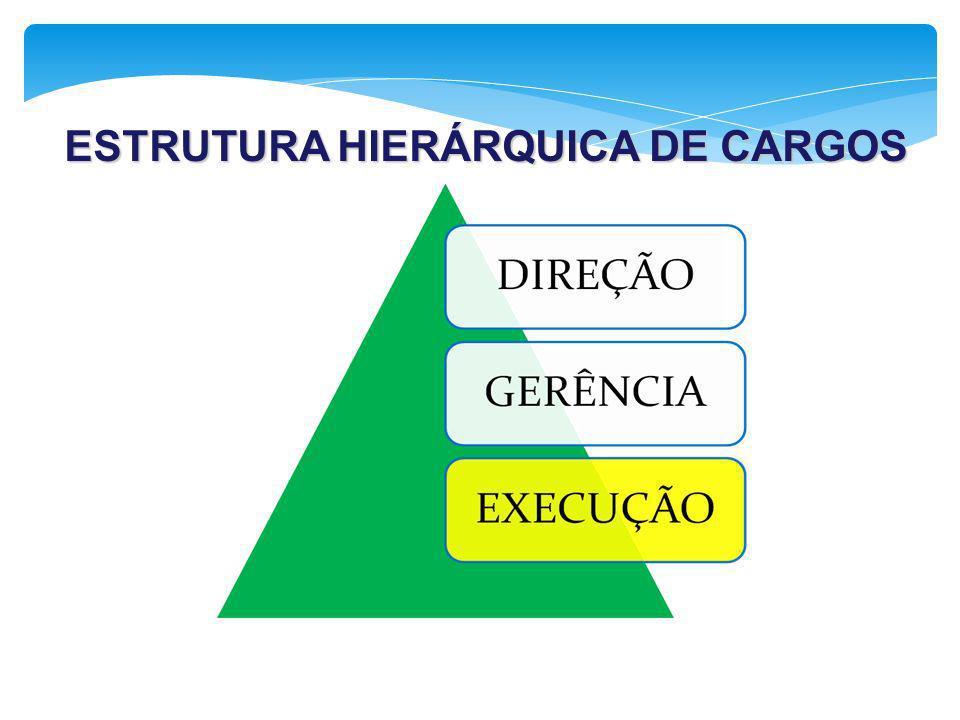 ESTRUTURA HIERÁRQUICA DE CARGOS ESTRUTURA HIERÁRQUICA DE CARGOS