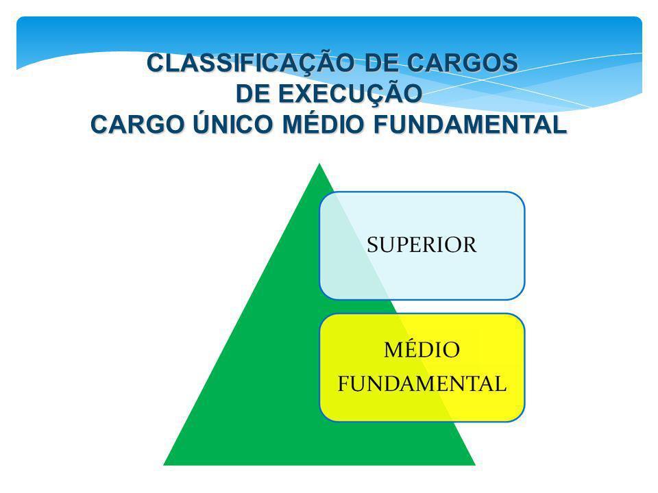 CLASSIFICAÇÃO DE CARGOS DE EXECUÇÃO CLASSIFICAÇÃO DE CARGOS DE EXECUÇÃO CARGO ÚNICO MÉDIO FUNDAMENTAL