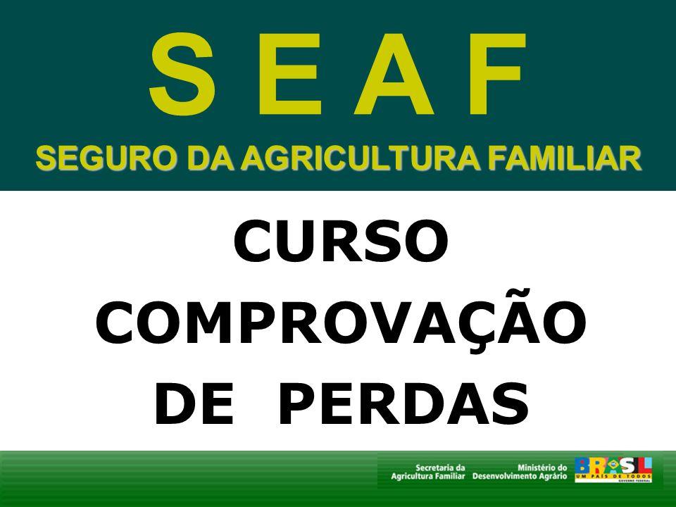 SEGURO DA AGRICULTURA FAMILIAR CURSO COMPROVAÇÃO DE PERDAS S E A F SEGURO DA AGRICULTURA FAMILIAR