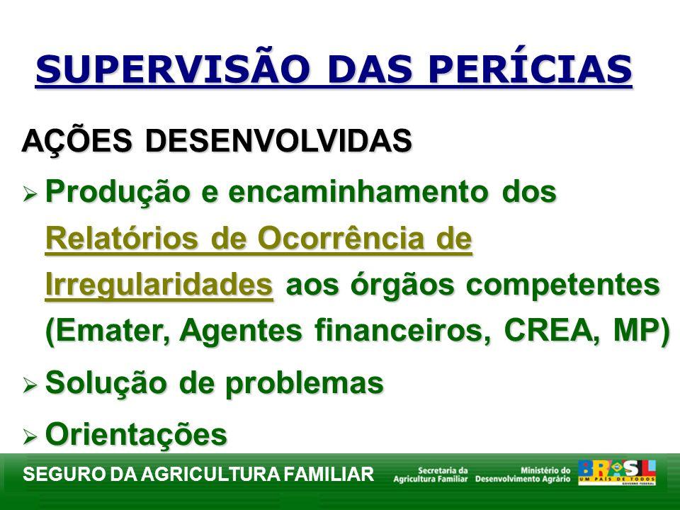 SEGURO DA AGRICULTURA FAMILIAR SUPERVISÃO DAS PERÍCIAS AÇÕES DESENVOLVIDAS Produção e encaminhamento dos Relatórios de Ocorrência de Irregularidades a