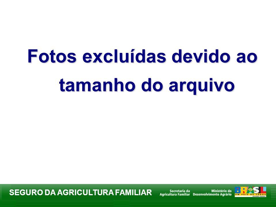 SEGURO DA AGRICULTURA FAMILIAR Fotos excluídas devido ao tamanho do arquivo
