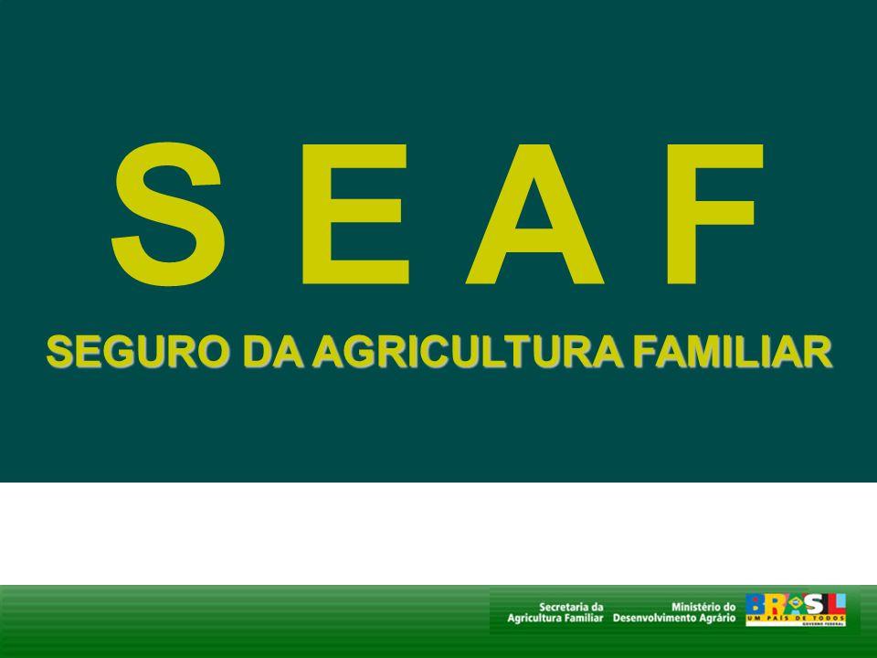 S E A F SEGURO DA AGRICULTURA FAMILIAR