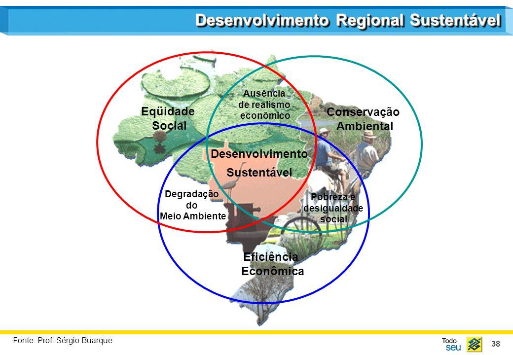 38 Eficiência Econômica Conservação Ambiental Eqüidade Social Ausência de realismo econômico Pobreza e desigualdade social Degradação do Meio Ambiente