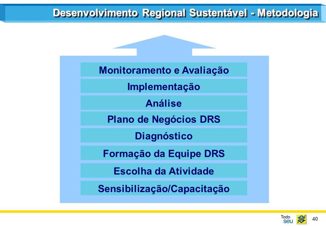 40 Desenvolvimento Regional Sustentável - Metodologia Monitoramento e Avaliação Implementação Análise Plano de Negócios DRS Diagnóstico Formação da Eq