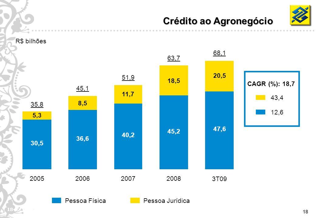 18 Pessoa JurídicaPessoa Física Crédito ao Agronegócio R$ bilhões CAGR (%): 18,7 43,4 12,6 35,8 30,5 5,3 2005 45,1 36,6 8,5 2006 51,9 40,2 11,7 2007 6