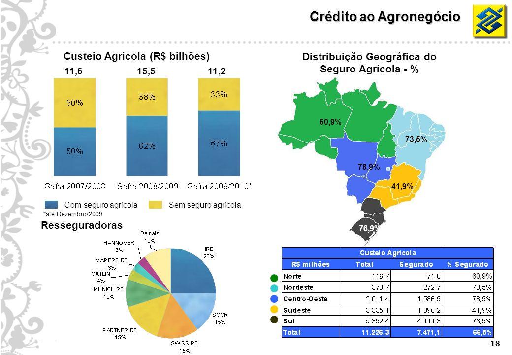 18 Sem seguro agrícola Com seguro agrícola Distribuição Geográfica do Seguro Agrícola - % Custeio Agrícola (R$ bilhões) 60,9% 73,5% 78,9% 41,9% 76,9% 11,6 *até Dezembro/2009 15,511,2 Resseguradoras Crédito ao Agronegócio 60,9%