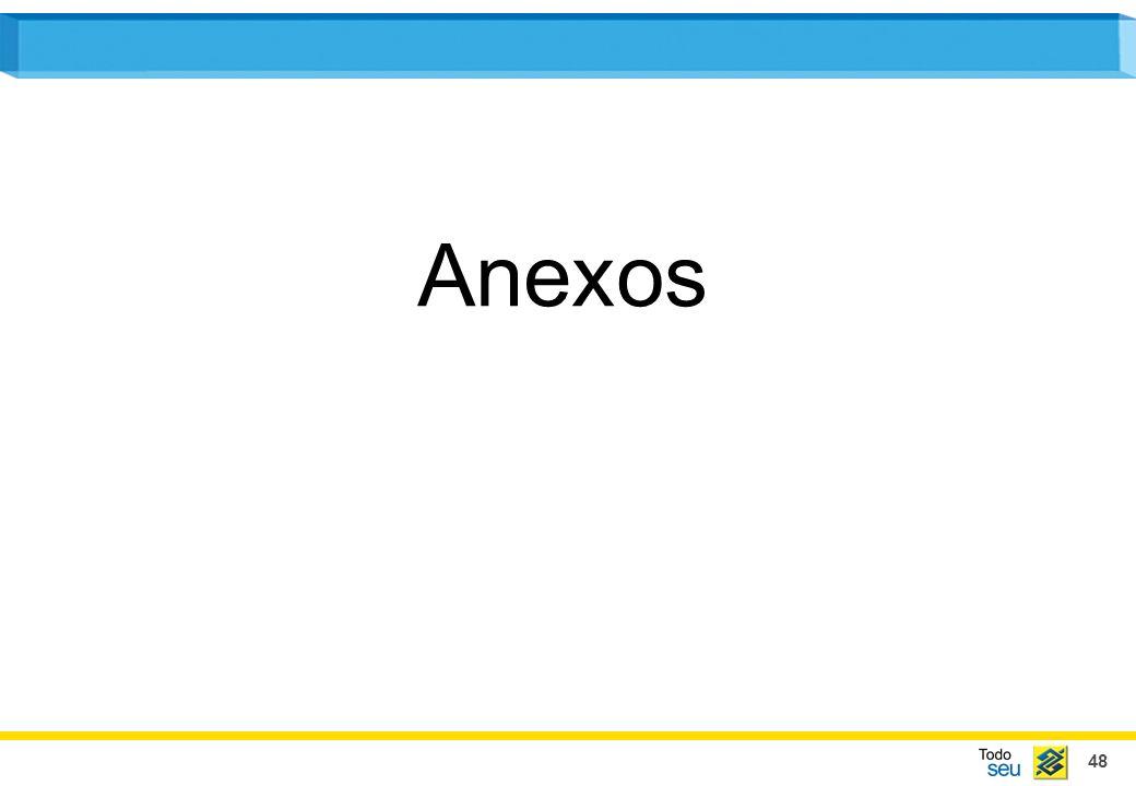 48 Anexos