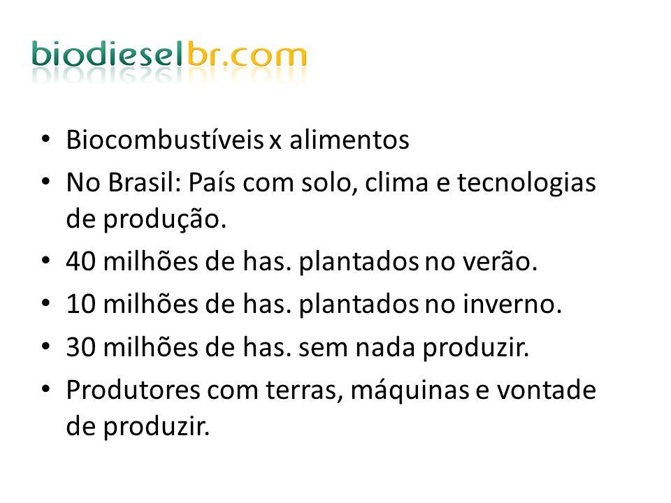 Biocombustíveis x alimentos No Brasil: País com solo, clima e tecnologias de produção. 40 milhões de has. plantados no verão. 10 milhões de has. plant