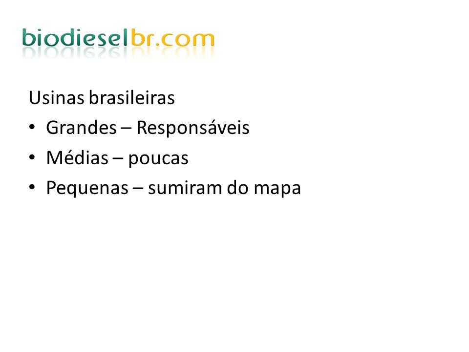 Usinas brasileiras Grandes – Responsáveis Médias – poucas Pequenas – sumiram do mapa