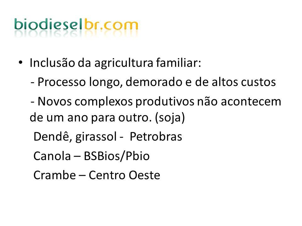 Inclusão da agricultura familiar: - Processo longo, demorado e de altos custos - Novos complexos produtivos não acontecem de um ano para outro. (soja)