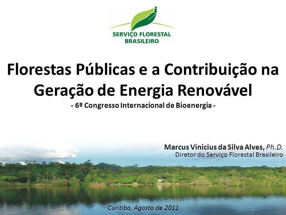 Florestas Públicas e a Contribuição na Geração de Energia Renovável - 6º Congresso Internacional de Bioenergia - Curitiba, Agosto de 2011 Marcus Vinic