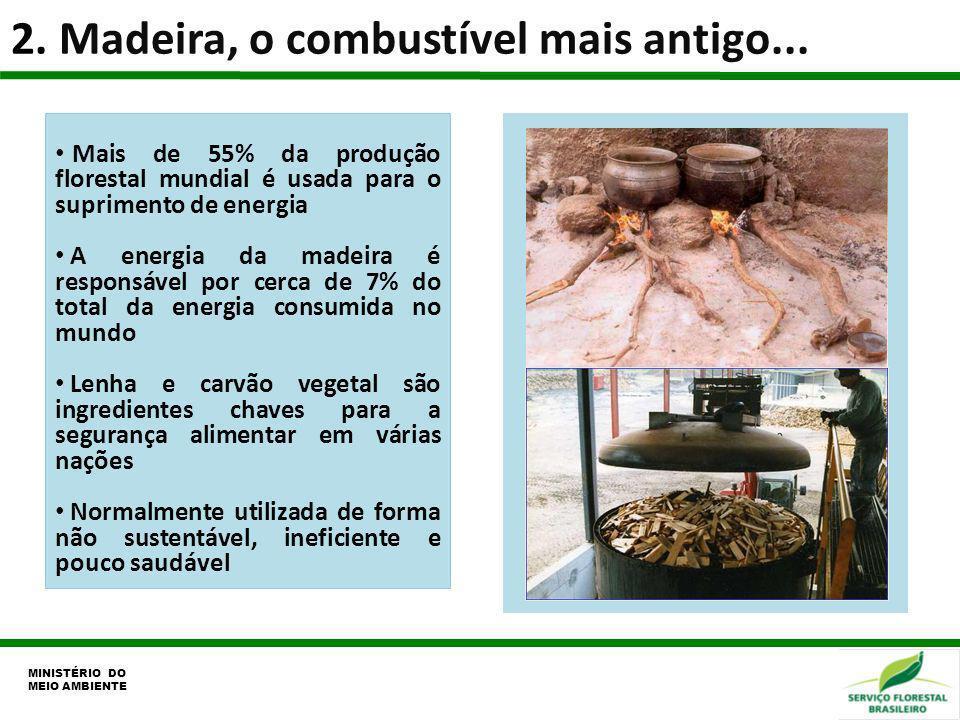 2. Madeira, o combustível mais antigo... MINISTÉRIO DO MEIO AMBIENTE Mais de 55% da produção florestal mundial é usada para o suprimento de energia A