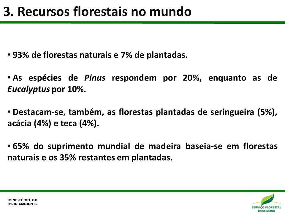 3. Recursos florestais no mundo MINISTÉRIO DO MEIO AMBIENTE 93% de florestas naturais e 7% de plantadas. As espécies de Pinus respondem por 20%, enqua