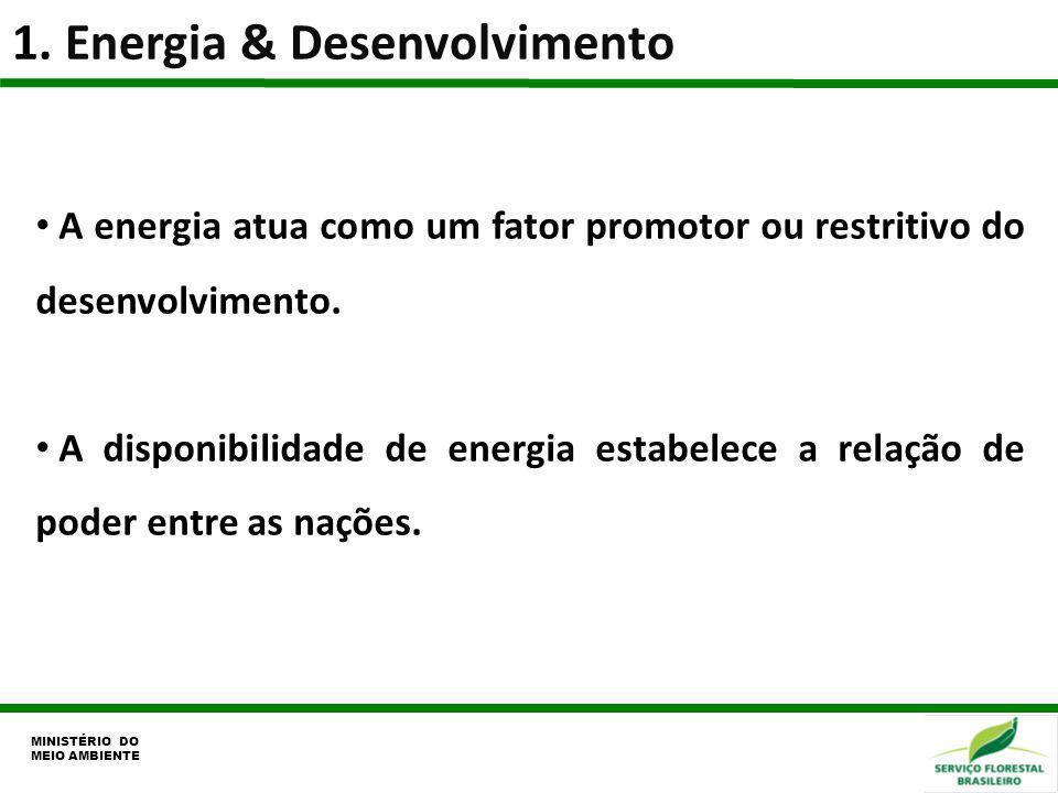 1. Energia & Desenvolvimento MINISTÉRIO DO MEIO AMBIENTE A energia atua como um fator promotor ou restritivo do desenvolvimento. A disponibilidade de
