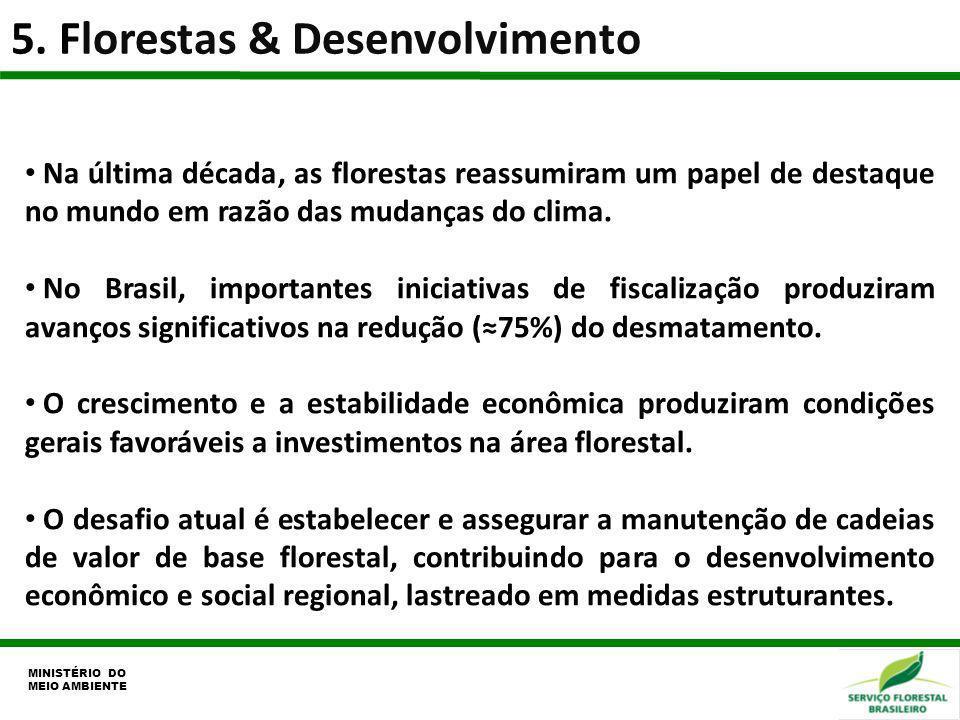 5. Florestas & Desenvolvimento MINISTÉRIO DO MEIO AMBIENTE Na última década, as florestas reassumiram um papel de destaque no mundo em razão das mudan