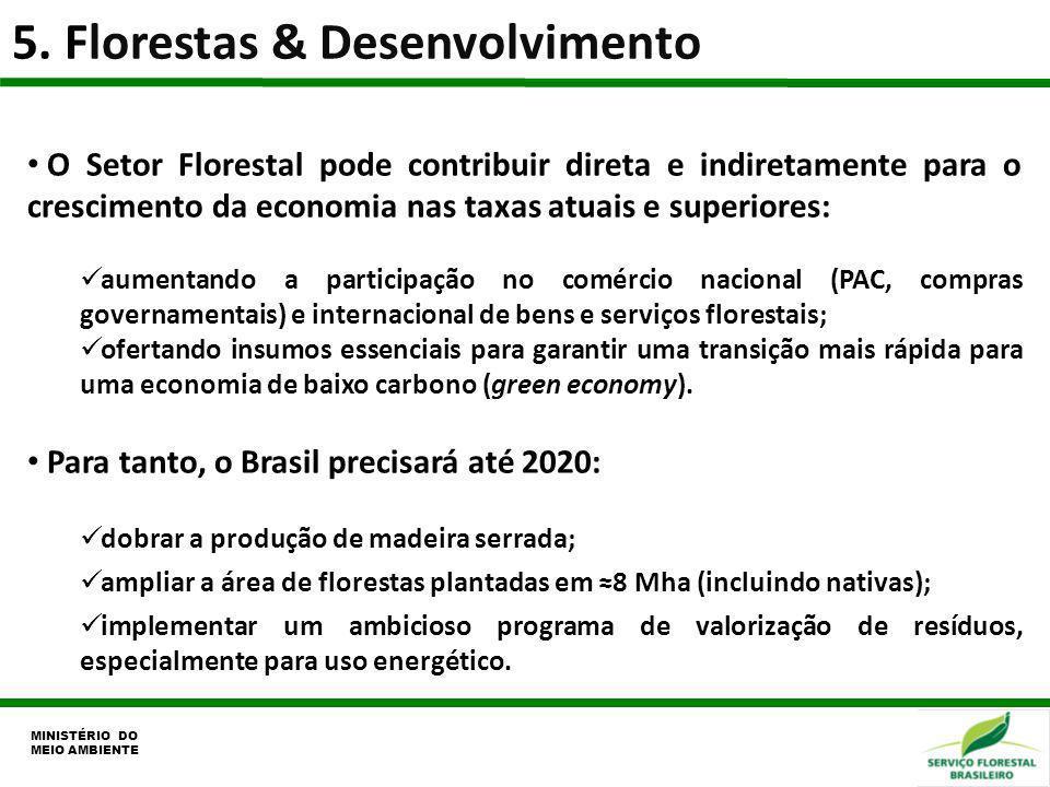 5. Florestas & Desenvolvimento MINISTÉRIO DO MEIO AMBIENTE O Setor Florestal pode contribuir direta e indiretamente para o crescimento da economia nas