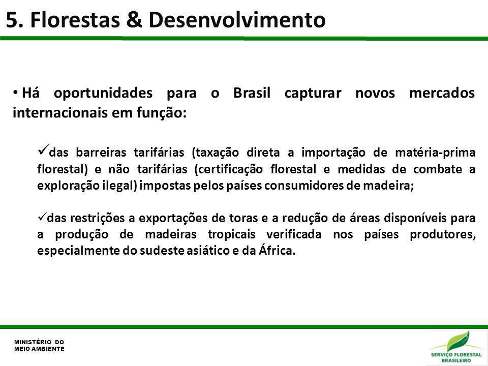 5. Florestas & Desenvolvimento MINISTÉRIO DO MEIO AMBIENTE Há oportunidades para o Brasil capturar novos mercados internacionais em função: das barrei