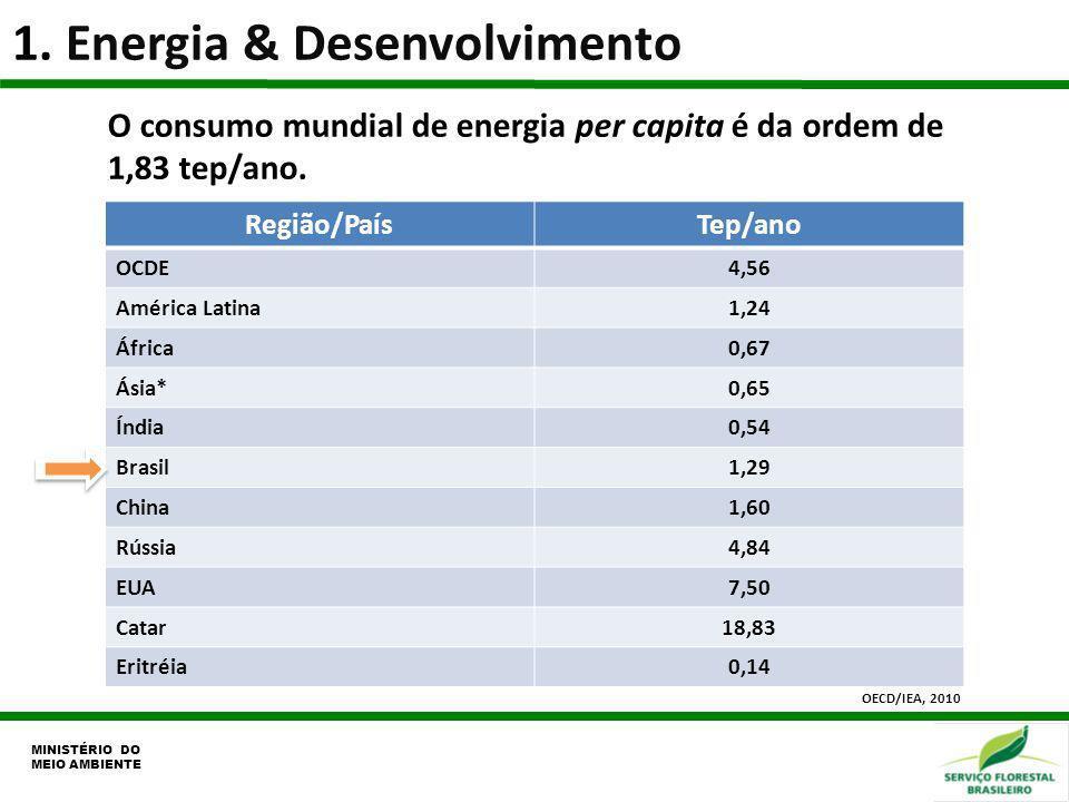 1. Energia & Desenvolvimento MINISTÉRIO DO MEIO AMBIENTE O consumo mundial de energia per capita é da ordem de 1,83 tep/ano. Região/PaísTep/ano OCDE4,