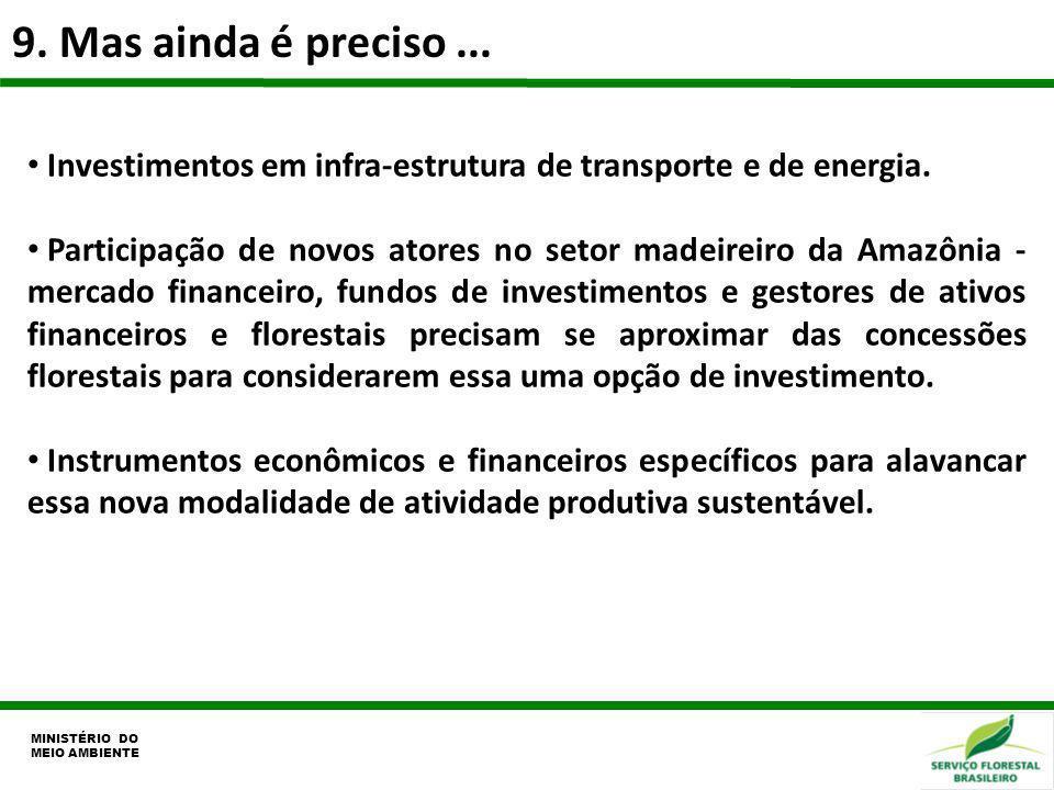 9. Mas ainda é preciso... MINISTÉRIO DO MEIO AMBIENTE Investimentos em infra-estrutura de transporte e de energia. Participação de novos atores no set
