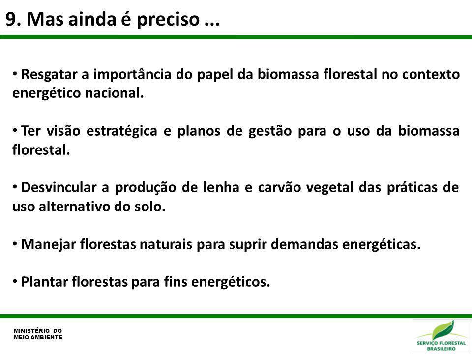 9. Mas ainda é preciso... MINISTÉRIO DO MEIO AMBIENTE Resgatar a importância do papel da biomassa florestal no contexto energético nacional. Ter visão
