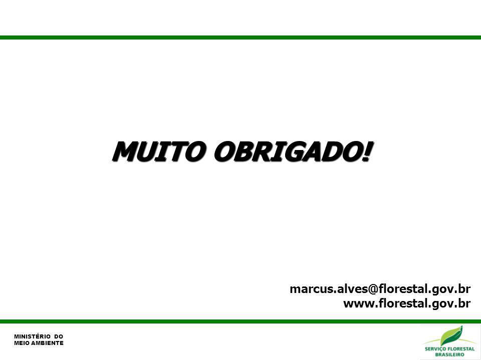 MUITO OBRIGADO! marcus.alves@florestal.gov.br www.florestal.gov.br MINISTÉRIO DO MEIO AMBIENTE