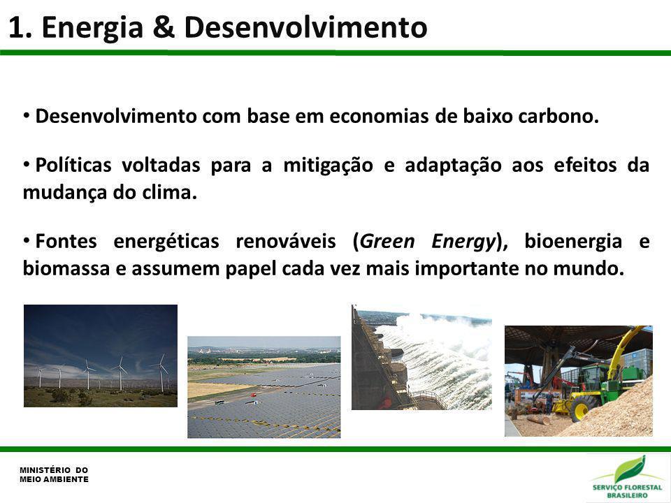 1. Energia & Desenvolvimento MINISTÉRIO DO MEIO AMBIENTE Desenvolvimento com base em economias de baixo carbono. Políticas voltadas para a mitigação e