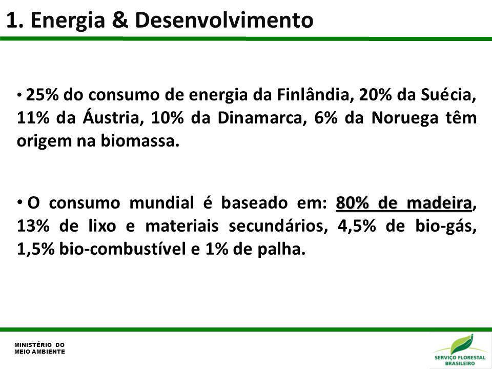 1. Energia & Desenvolvimento MINISTÉRIO DO MEIO AMBIENTE 25% do consumo de energia da Finlândia, 20% da Suécia, 11% da Áustria, 10% da Dinamarca, 6% d
