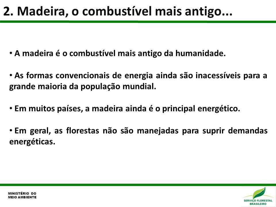 2. Madeira, o combustível mais antigo... MINISTÉRIO DO MEIO AMBIENTE A madeira é o combustível mais antigo da humanidade. As formas convencionais de e