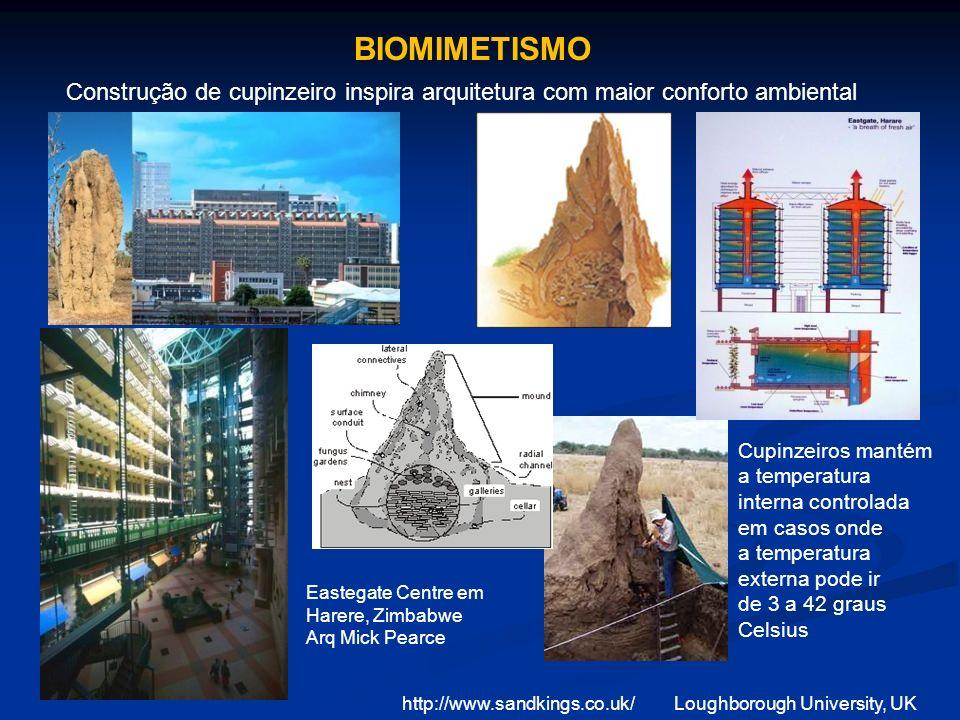 Construção de cupinzeiro inspira arquitetura com maior conforto ambiental http://www.sandkings.co.uk/Loughborough University, UK Cupinzeiros mantém a