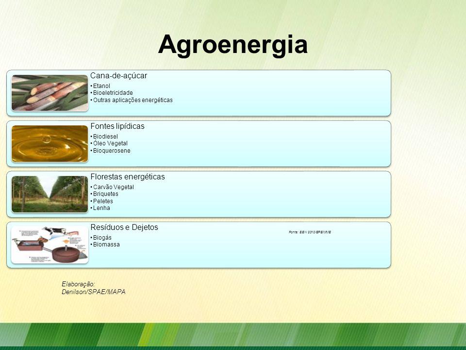 Agroenergia Cana-de-açúcar Etanol Bioeletricidade Outras aplicações energéticas Fontes lipídicas Biodiesel Óleo Vegetal Bioquerosene Florestas energét