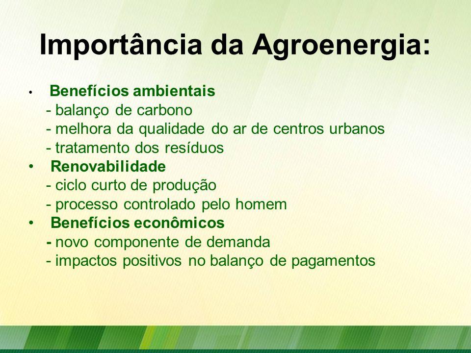 Importância da Agroenergia: Benefícios sociais - geração de empregos - geração de renda Segurança energética - diversificação de fontes - redução da dependência externa - balanço energético positivo