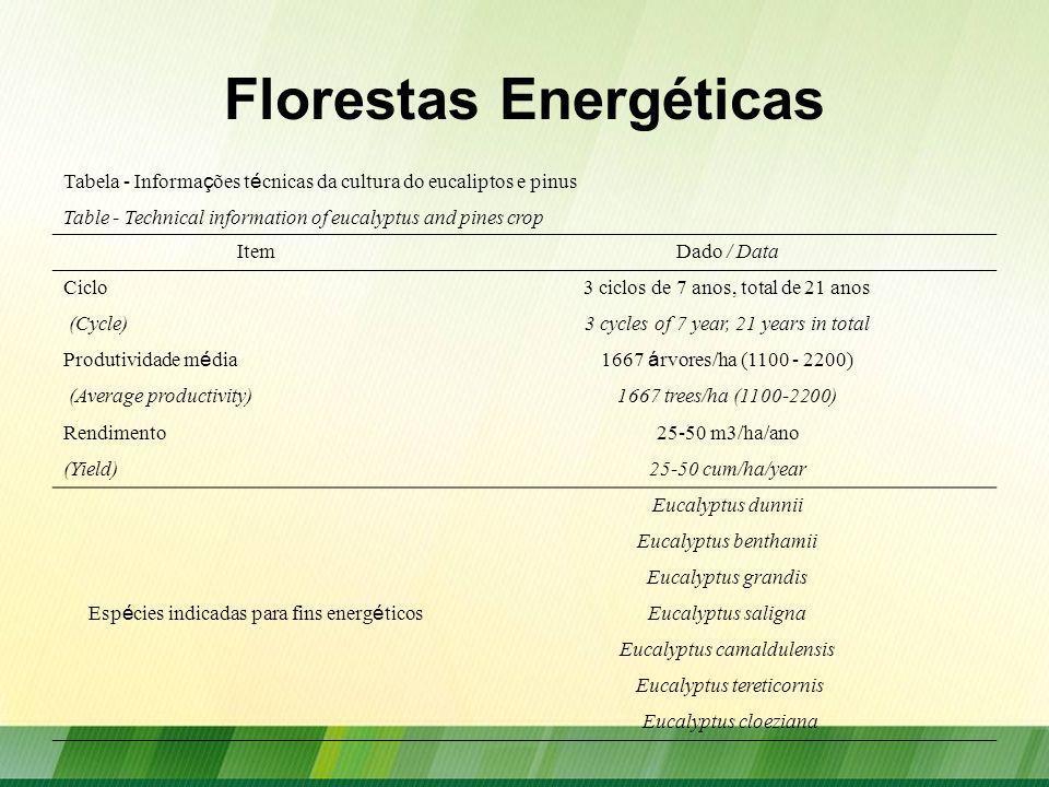 Florestas Energéticas Tabela - Informa ç ões t é cnicas da cultura do eucaliptos e pinus Table - Technical information of eucalyptus and pines crop It