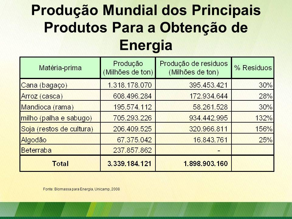 Produção Mundial dos Principais Produtos Para a Obtenção de Energia Fonte: Biomassa para Energia, Unicamp, 2008