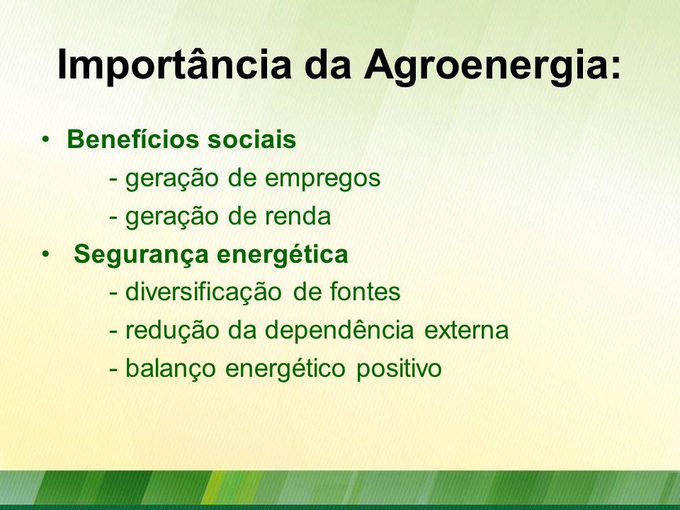Importância da Agroenergia: Benefícios sociais - geração de empregos - geração de renda Segurança energética - diversificação de fontes - redução da d